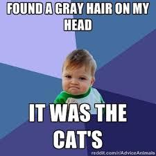 Success Kid Memes – 26 Hilarious Memes | Badass Memes.Com via Relatably.com
