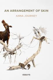essay from anna journey s an arrangement of skin chosen as a essay from anna journey s an arrangement of skin chosen as a poetry daily feature
