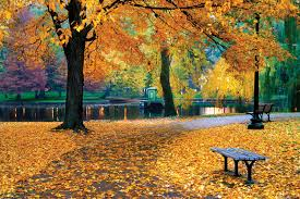 <b>autumn</b> | Definition, Characteristics, & Facts | Britannica