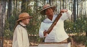 "Znalezione obrazy dla zapytania The Secret Life of Bees"""
