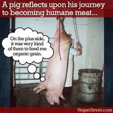 Yo Sólo Como Carne Producida Humanamente (resources) ~ Your Vegan ... via Relatably.com
