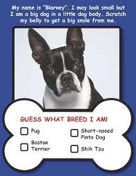 dog walking posters for kids image tips dog walking posters for kids
