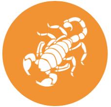 scropio horoscopeको लागि तस्बिर परिणाम