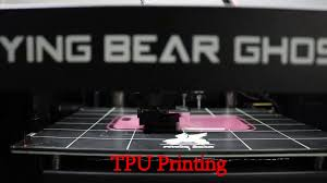 <b>Flyingbear Ghost 5</b> 3D Printer TPU Printing Video - YouTube