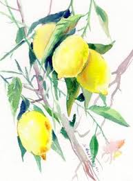 lemon tree x: lemon tree quot x quot original one of a kind watercolor painting