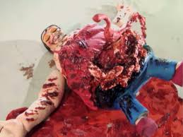 Image result for grisly death images
