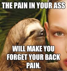 The pain in your ass Will make you forget your back pain ... via Relatably.com