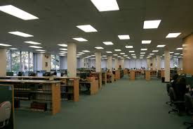 library essay in english halococcus descriptive essay rubric our essay writing practice online michigan state university of university essays english essay writing practice online