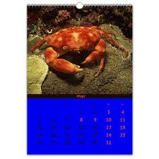 Перекидной Календарь А3 <b>ВОДНЫЙ МИР</b> #2299644 от robus
