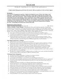 outstanding it s resume sample brefash resume it s engineer resume sample it s and marketing resume examples it pre s