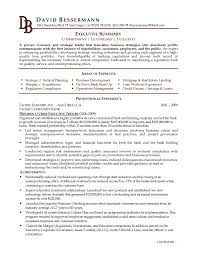executive summary resume samples resume format  executive
