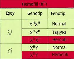 Genetik Hastalıklar