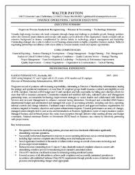finance executive resumefree resume templates