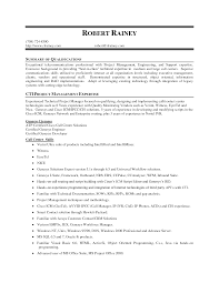 best resume format mis executive sample for summary ideas of best resume best format for resumes