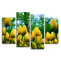 <b>Golden Flower Paintings</b> UK