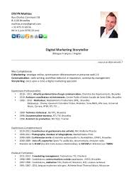 cv mathias ervyn digital marketing storyteller