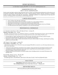 examples of resumes professional resume template singapore in 89 enchanting professional resume formats examples of resumes