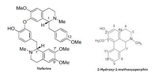 Nelumbo nucifera - Scientific Review on Usage, Dosage, Side ...