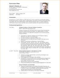 12 curriculum vitae sample basic job appication letter development cv sample belenchambercom g20tasne