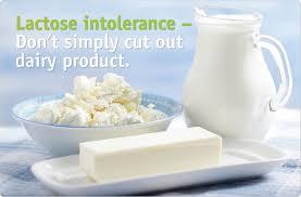Rezultat iskanja slik za lactose intolerance