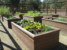 Small Picture homemade galvanized raised garden beds raised bed gardening