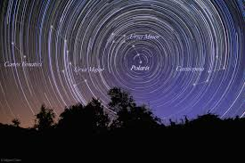 Image result for northern circumpolar constellations