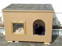 Cat House for those chilly nightsPicture of Cat House for those chilly nights