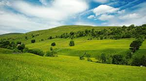 Image result for hills