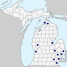 Butomus umbellatus - Michigan Flora