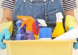 Mrs. Meyer's <b>Clean</b> Day