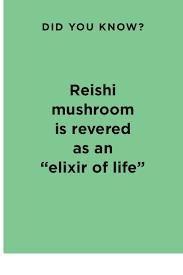 <b>Dr</b>. <b>Weil</b> Mega-Mushroom | <b>Origins</b>