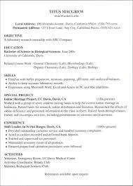 internship examples of resumes for internships