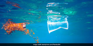 <b>Say No To Plastic</b>: Here Are 5 Simple Ways To Cut Down Plastic ...