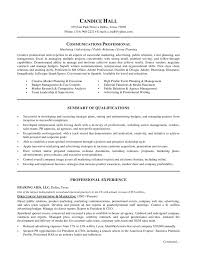 marketing director resume summary