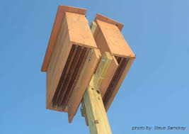 Download Free Bat House Plans Do It Yourself Plans DIY      Free Bat House Plans Do It Yourself