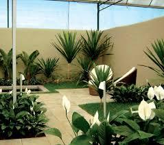 Resultado de imagem para sites de jardinagem e paisagismo