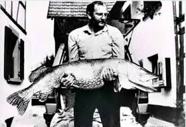 Esox Lucius - World's BIGGEST Pikes