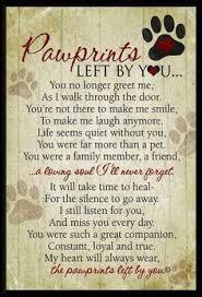 Cards - Pet sympathy on Pinterest | Pet Sympathy Cards, Loss Of ... via Relatably.com