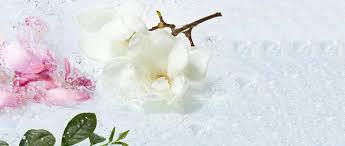 <b>Гель для Ванны и</b> Душа «Магнолия & Белый Чай» - Yves Rocher