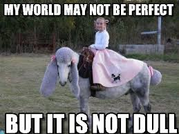 My World May Not Be Perfect - Jacqueline meme on Memegen via Relatably.com