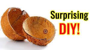 How to Resue Waste <b>Coconut Shell</b>   Eco-Friendly <b>Organic</b> Coconut ...