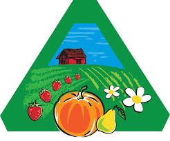 Showing 19 Farms That Have Fresh <b>Flowers</b>