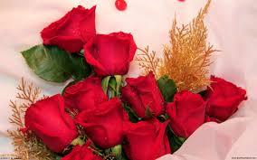 Kết quả hình ảnh cho Hình ảnh hoa hồng và lời chúc mừng