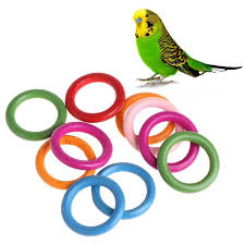 10 Pcs/Bag Wood Rings <b>Parrot Toys</b> Accessories Colorful Random ...