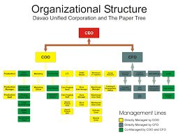 revised coso principle  establish organizational structure