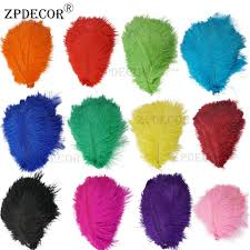 ZPDECOR Feathers 001 Store - Amazing prodcuts with exclusive ...