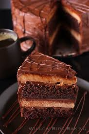 <b>Super Fancy</b> Chocolate Cheesecake Cake (and Other Perfect ...