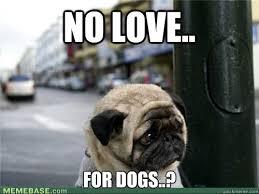 sad pug is so sad memes   quickmeme via Relatably.com