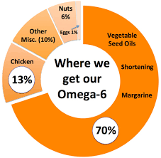 Image result for omega 6 omega 3 ratio graph