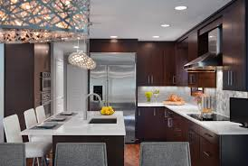 big refrigerator modern kitchen design